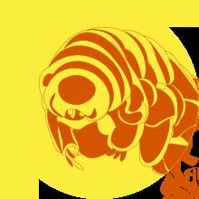 SfP_Newsletter_logo
