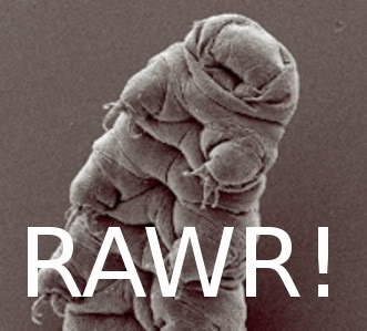 tardigrade-rawr